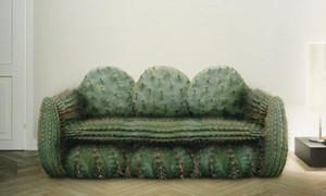 Cactussofa